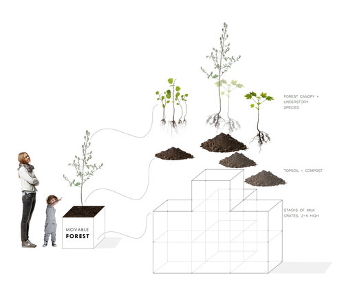 Roots_First_Design_Movable_Forest_1