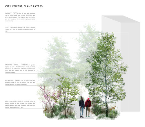 Roots_First_Design_Movable_Forest_2